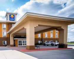 Comfort Inn & Suites - Greenville