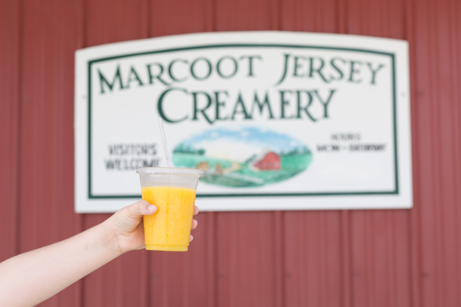 Marcoot Jersey Creamery's CHEESEFEST 2020