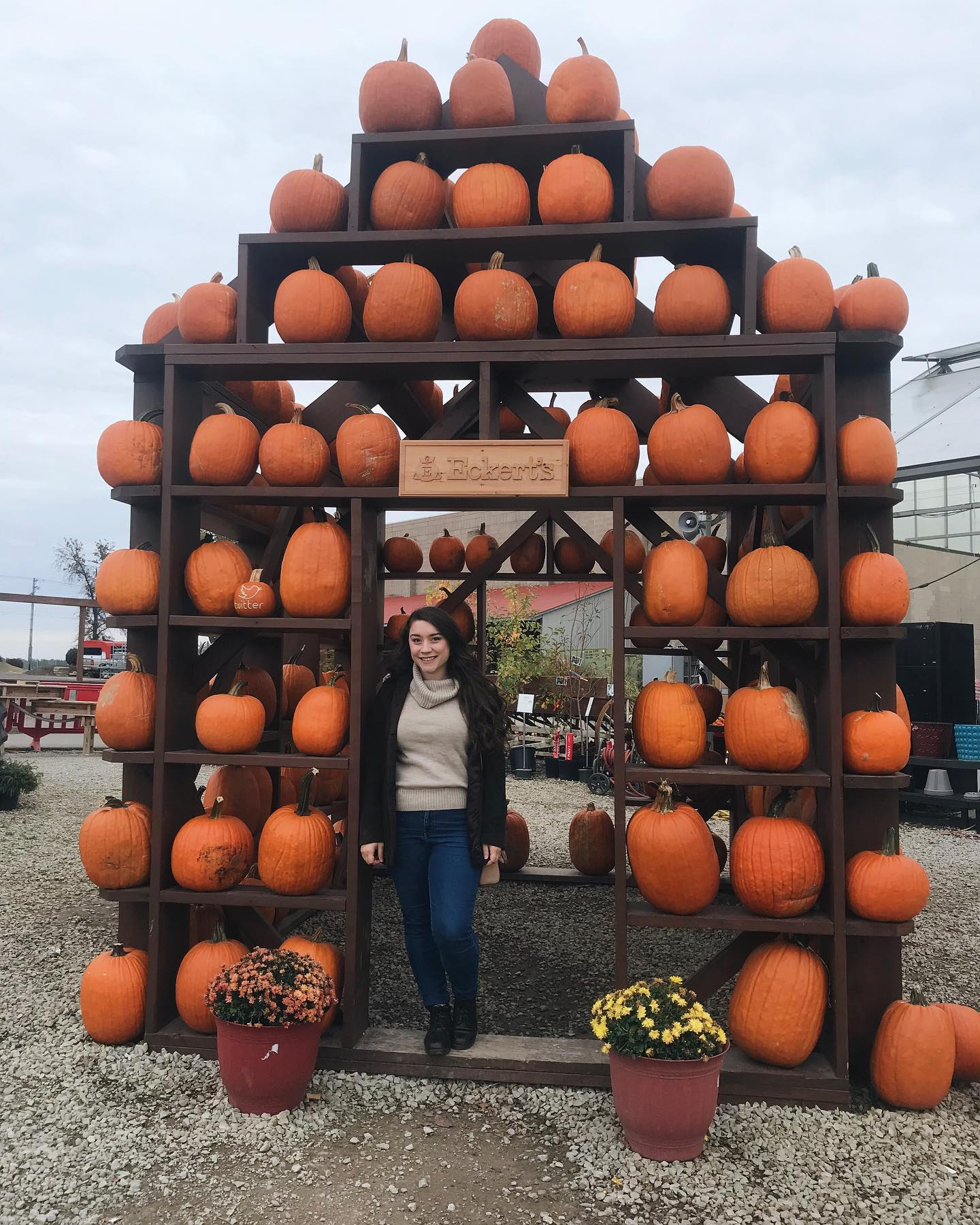 Top Places To Pick Out Pumpkins In ILLINOISouth
